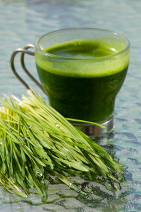 Rejuvenate Your Health with Green Superfoods this Spring