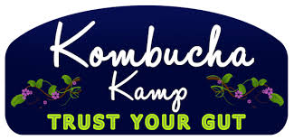 5 Secrets I Learned at Kombucha Kamp + Bonus Recipe