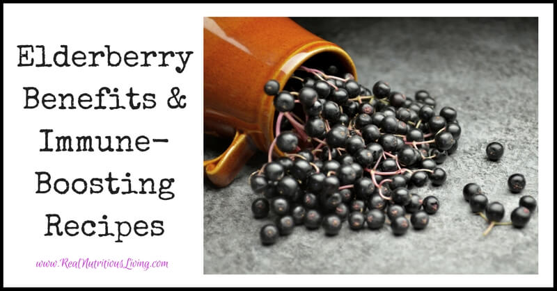 Elderberry Benefits & Immune-Boosting Recipes // realnutritiousliving.com