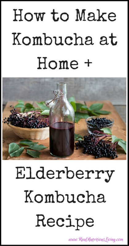 How to Make Kombucha at Home + Elderberry Kombucha Recipe // realnutritiousliving.com