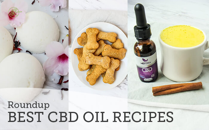 Best CBD Oil Recipes Roundup